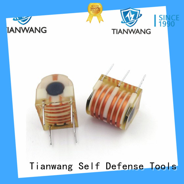 Tianwang cold resistance burner ignition transformer custom service fast delivery