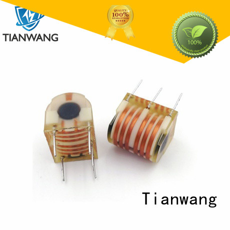 Tianwang good insulation performance burner ignition transformer custom service fast delivery